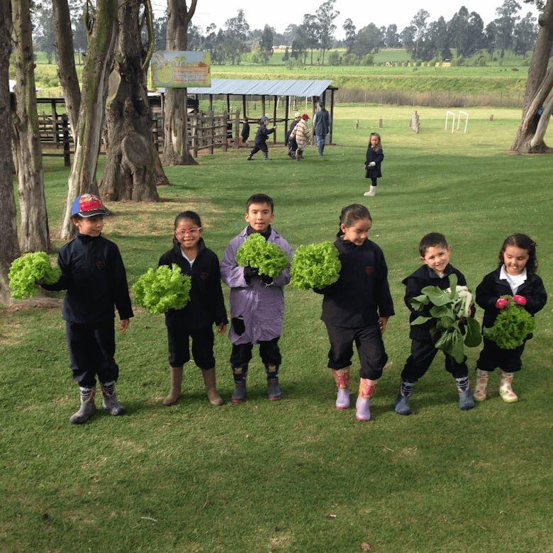 La importancia de cuidar el medio ambiente en nuestro colegio